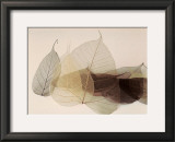 Chablis Prints by Durwood Zedd
