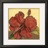 Cropped Sophisticated Hibiscus III Art by Jennifer Goldberger