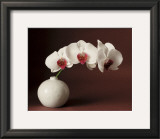 Orchid and white vase Art by Florence Rouquette