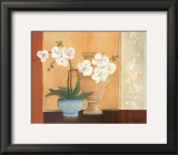 Weibe Orchideen II Prints by Juliane Jahn