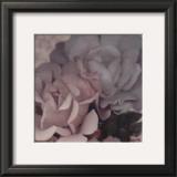 Parfum III Print by S. G. Rose