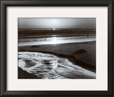 Birds on a Beach Prints by Ansel Adams