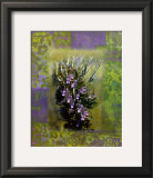 Fines Herbes II Prints by Giancarlo Riboli