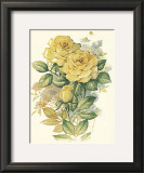 Yellow Roses Prints by T. C. Chiu