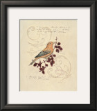 Filigree Songbird Prints by Chad Barrett