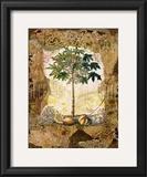 Lace and Papaya Prints by David Hewitt