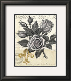 Fleur-de-Lis Rose Print by Devon Ross