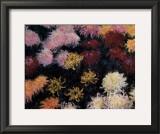 Chrysanthemum, 1897 Posters by Claude Monet