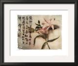 Oriental Lily Print by Julie Nightingale