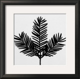 Simplicity Prints by Trefor Ball
