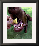 Dog Bite Print by Robert Mcclintock