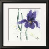 Iris II Posters by  Marthe