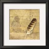 Owl Feather Prints by Susan Friedman