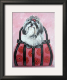 Shih-tzu Purse Posters by Carol Dillon