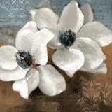 White Magnolias II Kunstdrucke von Lanie Loreth