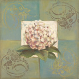 Hydrangeas on Green II Poster by Patricia Quintero-Pinto