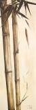 Sepia Guadua Bamboo I Prints by Patricia Quintero-Pinto