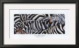 Zebras's Sea Art by LISA BENOUDIZ