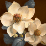 Blooming Magnolias II Posters by Lanie Loreth