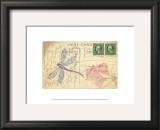 Postcard Dragonfly I Prints by Nancy Shumaker Pallan