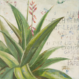 Aloe II Print by Patricia Quintero-Pinto