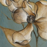 Translucent Magnolias Prints by Lanie Loreth