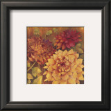 Autumn Dahlias II Art by Vera Hills