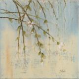 Cherry Blossom II Prints by Patricia Quintero-Pinto