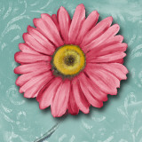 Blooming Daisy IV Prints by Nelly Arenas