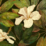 Hibiscus Leaves II Prints by Patricia Quintero-Pinto