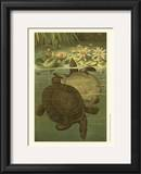 Pond Turtles Prints by Louis Prang