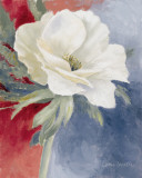 White Anemone I Prints by Lanie Loreth