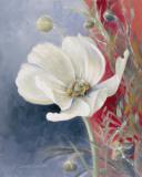 White Anemone II Print by Lanie Loreth
