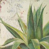 Aloe I Prints by Patricia Quintero-Pinto