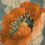Orange Poppy Prints by Lanie Loreth