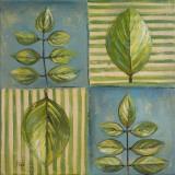 Natura II Prints by Patricia Quintero-Pinto