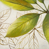 Fresh Leaves I Posters by Patricia Quintero-Pinto