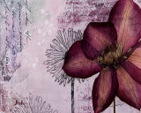 Pressed Flowers I Prints by Patricia Quintero-Pinto