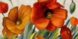 Poppy Splendor II Prints by Lanie Loreth