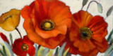 Poppy Splendor I Posters by Lanie Loreth