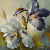 Irises After the Rain Prints by Lanie Loreth