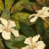 Hibiscus Leaves I Poster by Patricia Quintero-Pinto