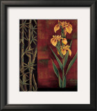 Yellow Iris Prints by Jill Deveraux