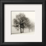 Winter Grove Print by Ilona Wellmann