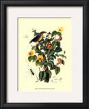 Bird in Nature II Prints by E. Guerin