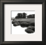 Bright Mist on the Marsh Prints by Dorothy Kerper Monnelly