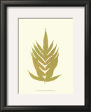 Lowes Fern II Print by Edward Lowe