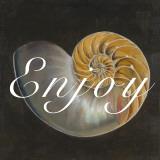 Enjoy Seashell Art by Patricia Quintero-Pinto