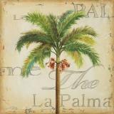 La Palma II Prints by Patricia Quintero-Pinto