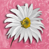 Blooming Daisy III Print by Patricia Quintero-Pinto